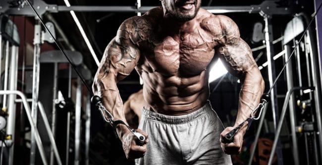 Bodybuilder workout in gym