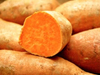Look for herbs varieties such as wild yams and fenugreek as well as chaste berry